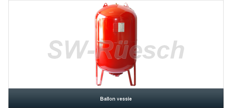 Ballon vessie